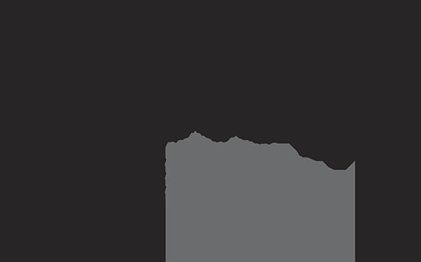 Logo_netfo-2